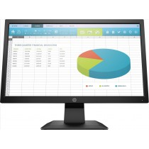 "HP P204 LED display 49,5 cm (19.5"") HD+ Nero"